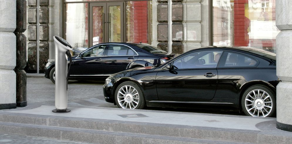 Two modern cars business-class are parked beside calve